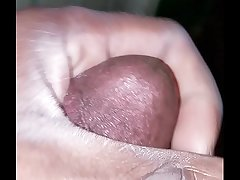 Two Nuts &amp_ A Orgasm